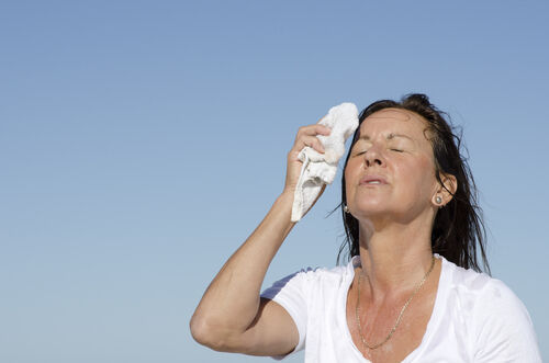 Heat Stroke Treatment and Prevention | 104 1 The Fish