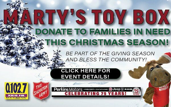 Donate to families in need this Christmas season!