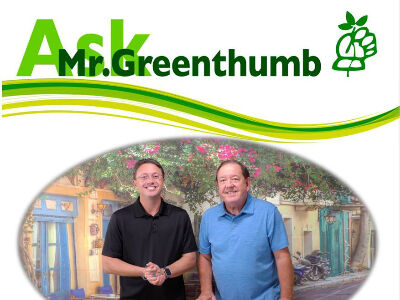 Ask Mr. Greenthumb and Real Estate Show