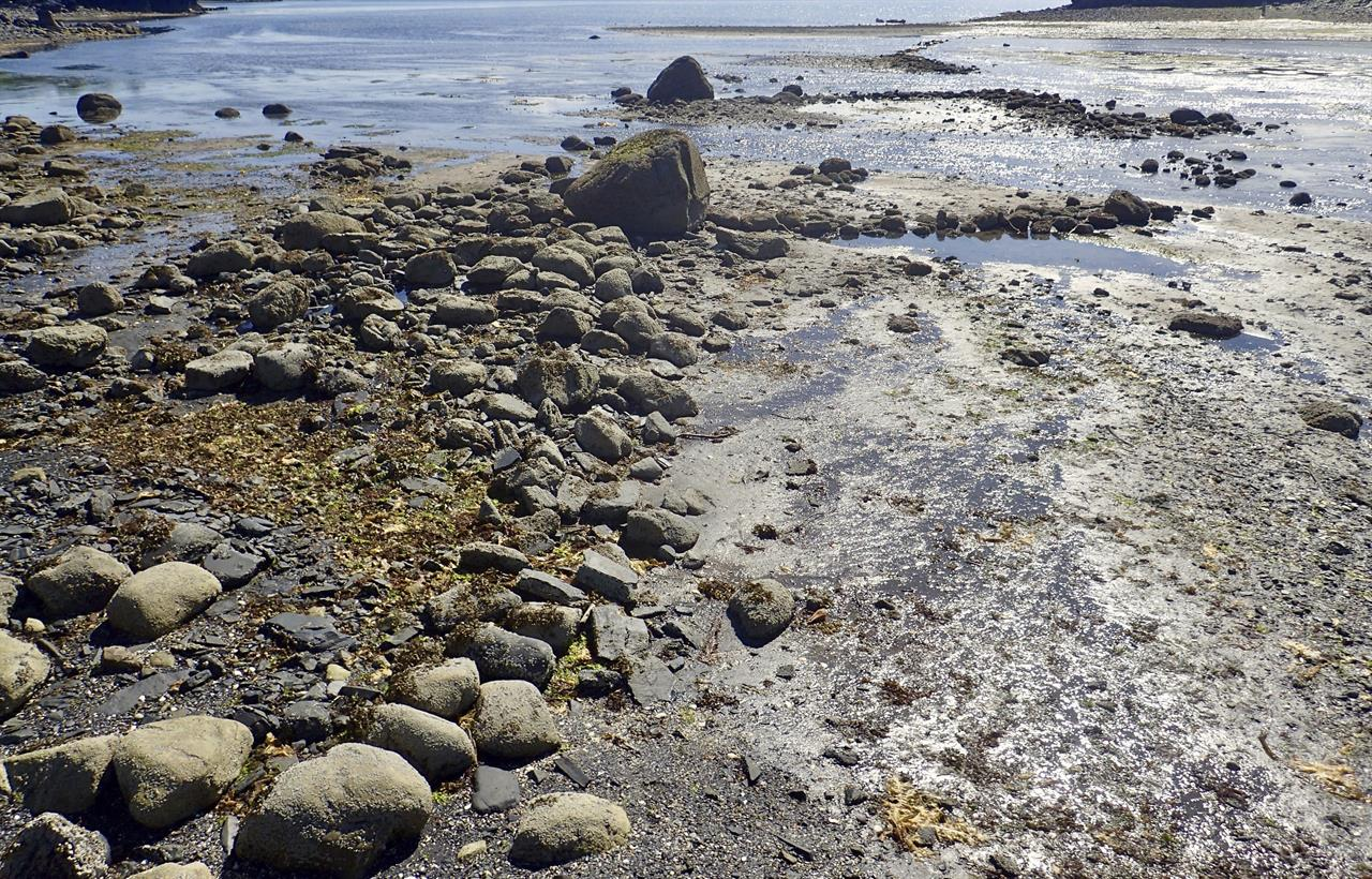 Prehistoric stone fish trap discovered on alaska island for Kodiak island fishing