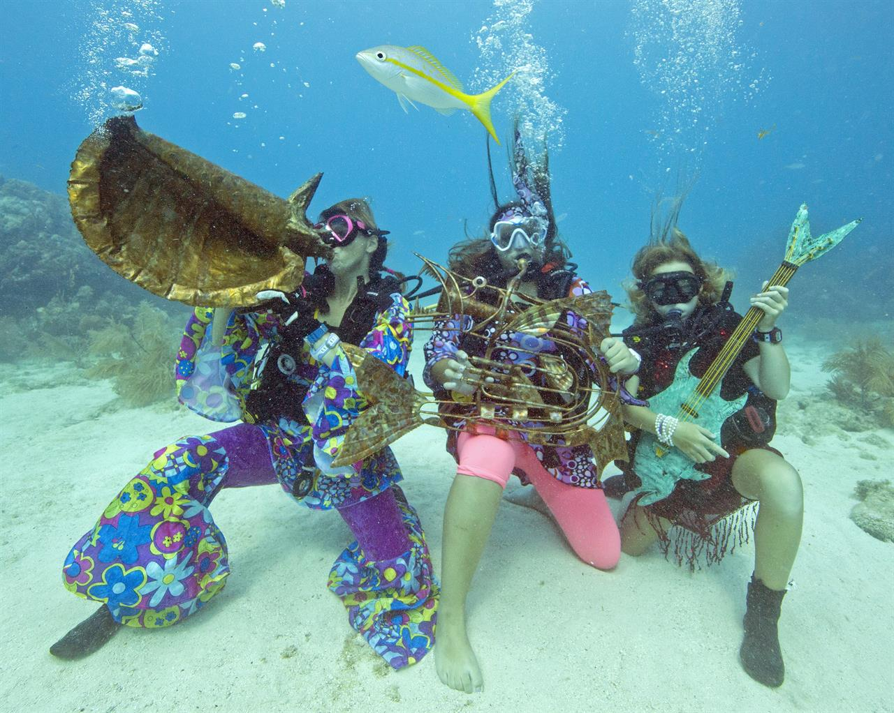 Florida Divers Snorkelers Submerge For Reef Music Festival - 8 great florida music festivals
