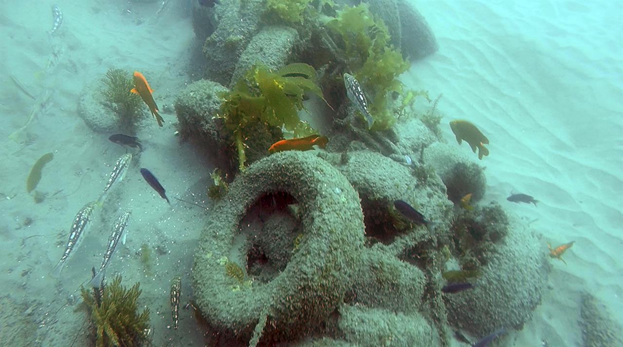 Divers removing 30-year-old junk reef off California coast