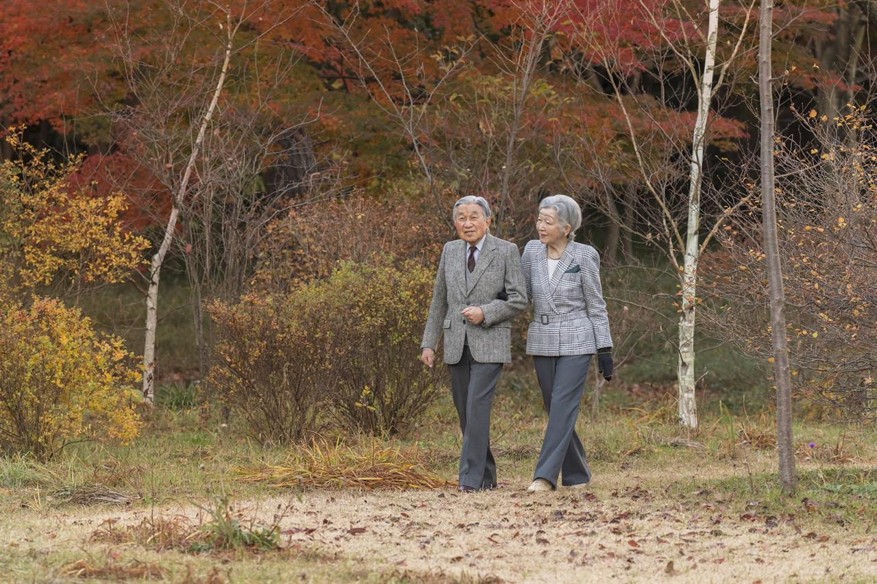 Japan Emperor turns 84, thanks people over abdication plans ...