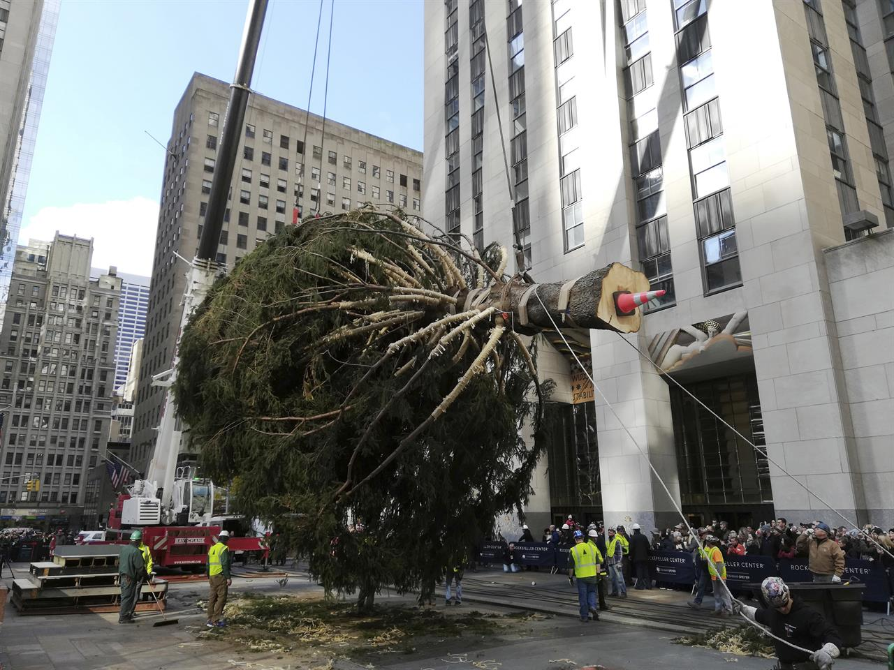 New York City's Rockefeller Center Christmas tree goes up ...