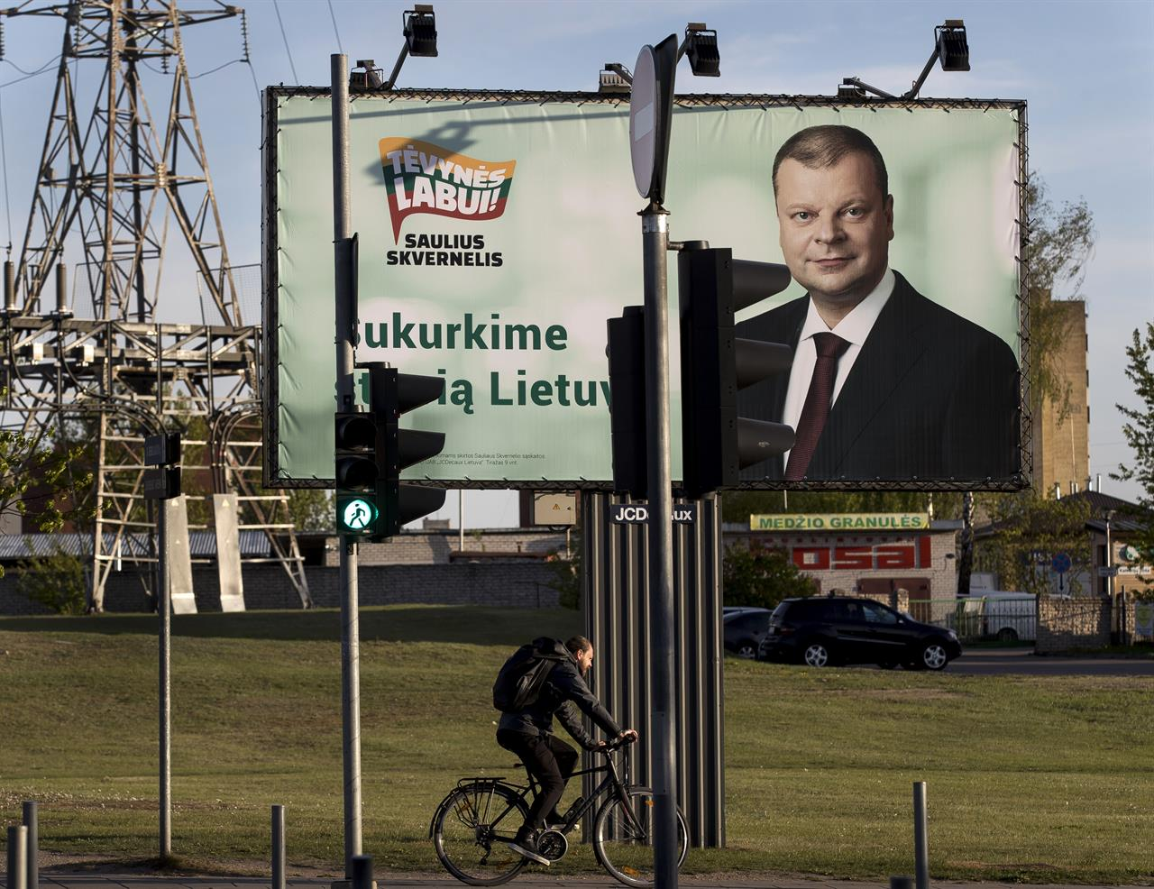 Voters to pick successor of Lithuania's popular 'Iron Lady