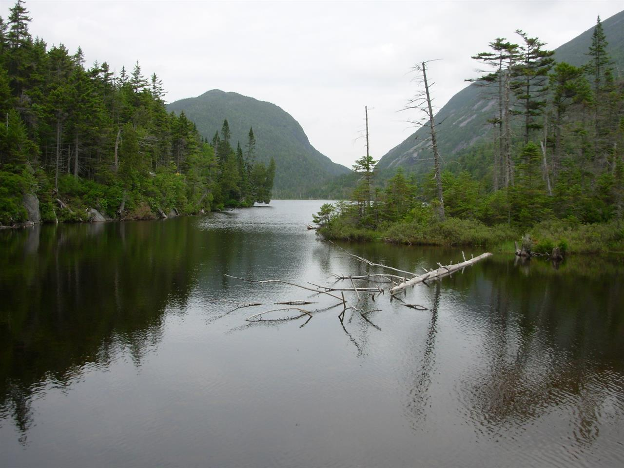 Trout found in Adirondack lake once soured by acid rain