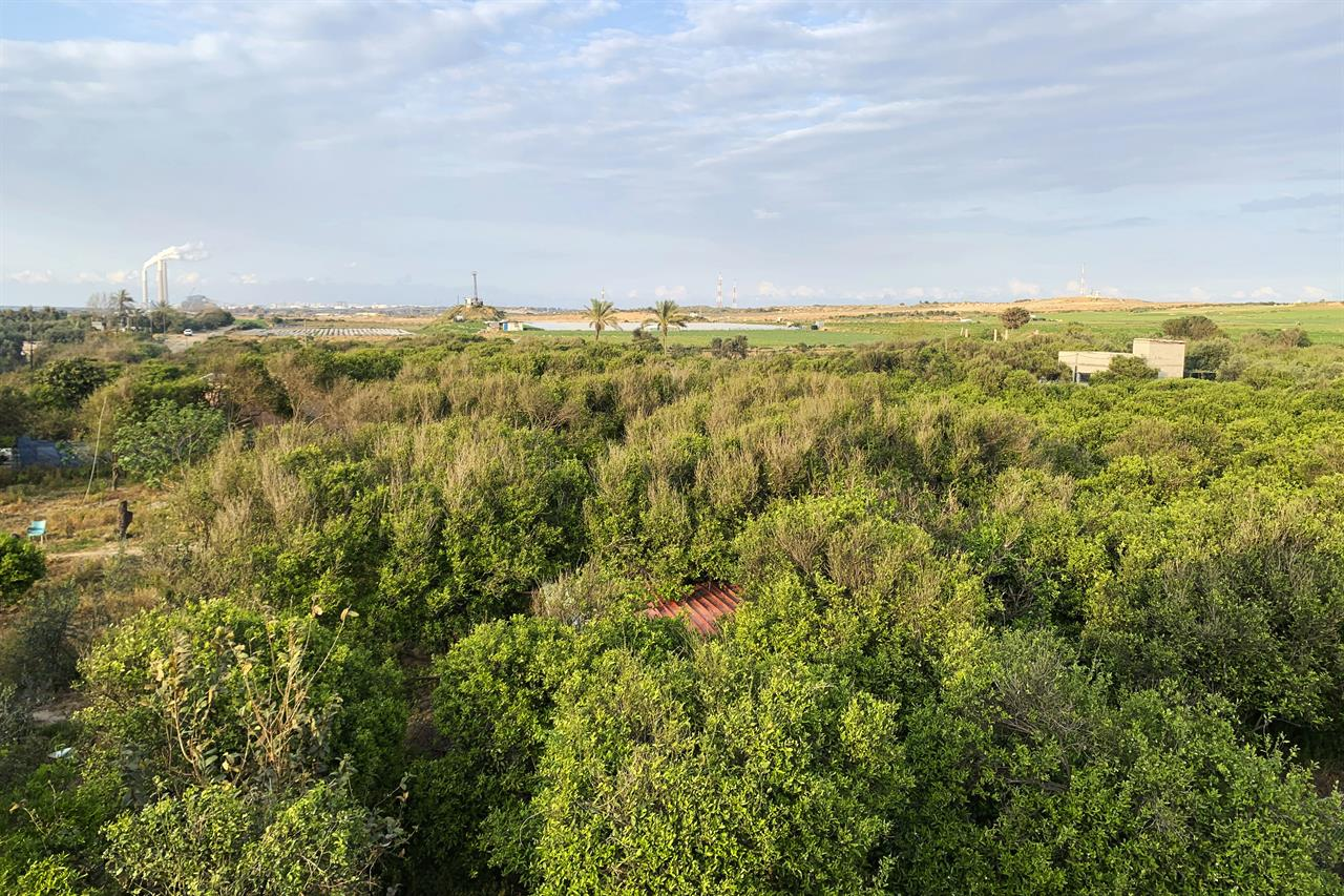 VIRUS DIARY: Isolation and patience on a quiet Gaza farm