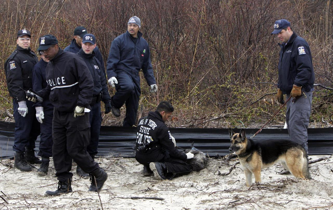 FILE - In this April 11, 2011, file photo, law enforcement and emergency personnel examine an object on the side of the road, center, near Jones Beach in Wantagh, N.Y. On Friday, May 22, 2020, authorities investigating the long-running mystery of skeletal remains strewn along a suburban New York beach highway said they have identified the remains of one of the women using DNA technology. (AP Photo/Seth Wenig, File)