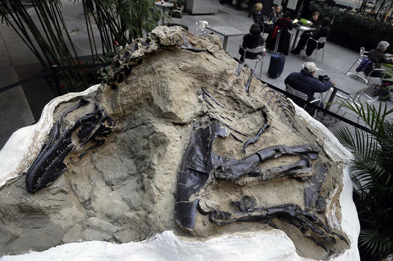 Court says dinosaur fossils worth millions aren't minerals