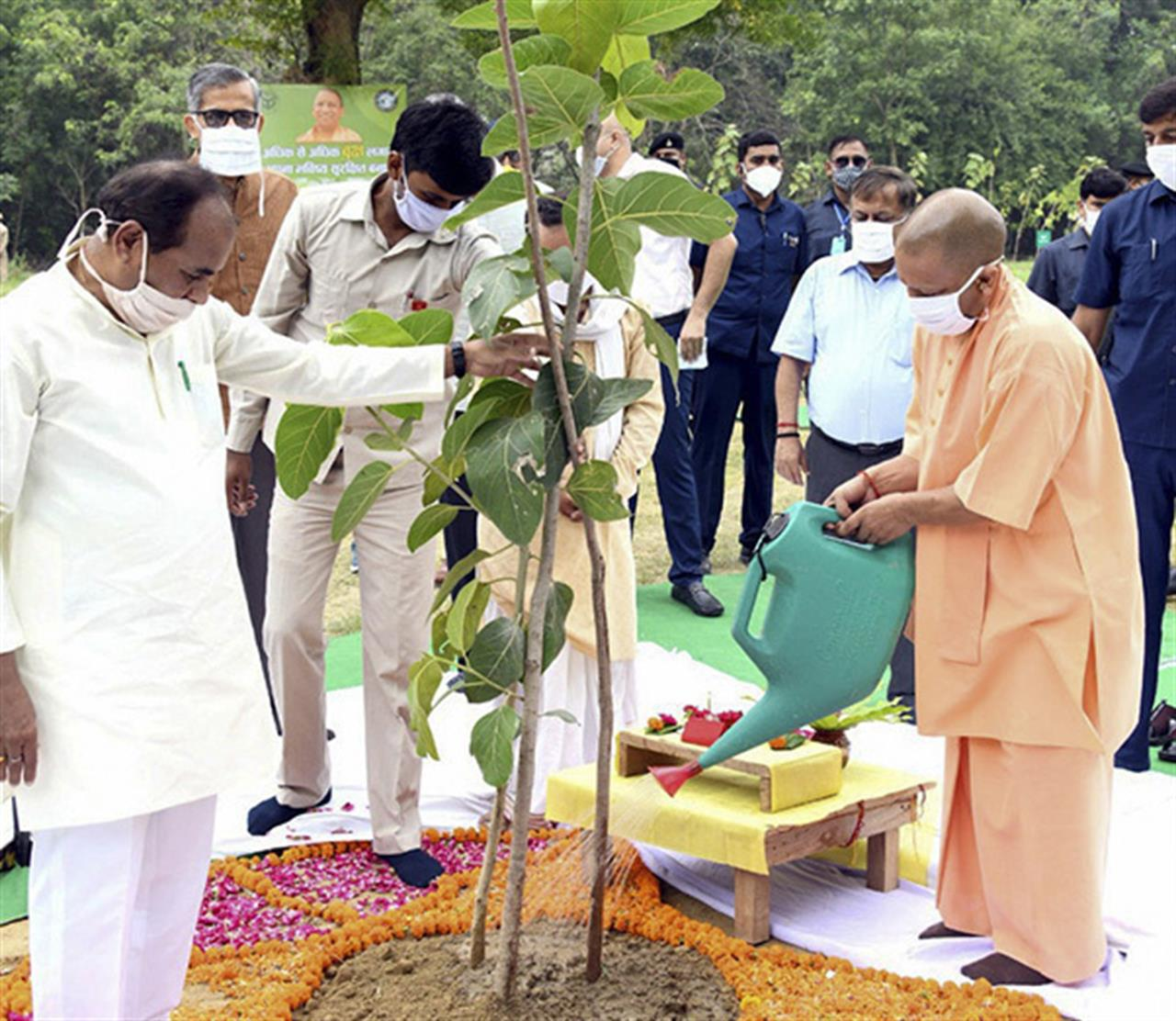 Indians keep their distance in mass tree planting campaign