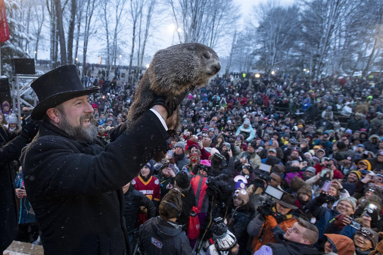 FILE - In this Feb. 2, 2020 file photo, Groundhog Club co-handler Al Dereume holds Punxsutawney Phil during the 134th celebration of Groundhog Day on Gobbler's Knob in Punxsutawney, Pa. The coronavirus pandemic means Groundhog Day won't be the same in the Pennsylvania town long associated with a prognosticating rodent. Organizers said Punxsutawney Phil will predict whether spring will come early or winter will last longer in 2021 without the usual crowds who gather at Gobbler's Knob.  Phil and his inner circle on Feb. 2 will deliver the prediction virtually by means of a live internet steam and website, organizers said.  (AP Photo/Barry Reeger, File)