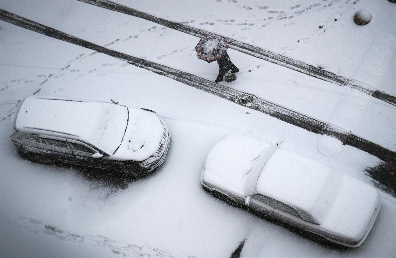 A woman walks in snowfall in St.Petersburg, Russia, Friday, Nov. 20, 2020. A cyclone has brought heavy snowfall to St. Petersburg region. (AP Photo/Dmitri Lovetsky)