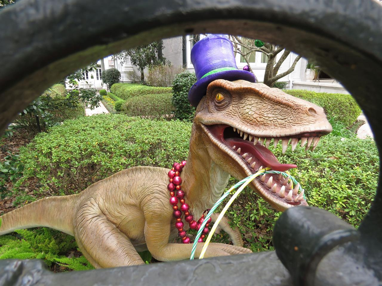 A top-hatted dinosaur, shown Tuesday, Jan. 26, 2021, is among Mardi Gras decorations in the yard of a mansion on St. Charles Avenue in New Orleans. Because pandemic dangers from large and widespread crowds have canceled Mardi Gras parades in New Orleans this year, thousands of people are decorating their homes as floats. (AP Photo/Janet McConnaughey)