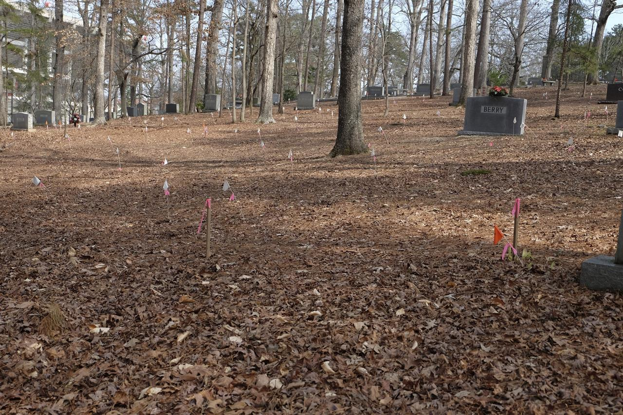 White and pink flags at Woodland Cemetery in Clemson, S.C. on Sunday, Feb. 28, 2021 show the locations of previously unmarked graves likely belonging to slaves, sharecroppers and convicted laborers in the university's history.  Students at Clemson University who found an unkempt graveyard on campus last year sparked the discovery of more than 600 unmarked graves most likely belonging to enslaved Black people, sharecroppers and convicted laborers. The revelation has Clemson working to identify the dead and properly honor them amid a national reckoning by universities about their legacies of racial injustice.  (AP Photo/Michelle Liu)