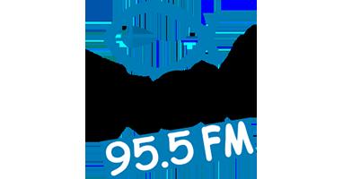 The Fish 95.5 FM
